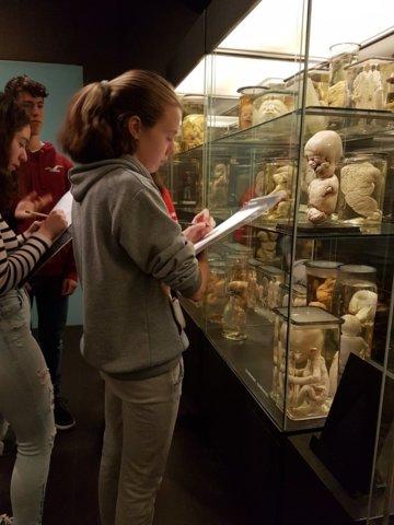 excursie-vrolik-museum-2019 2