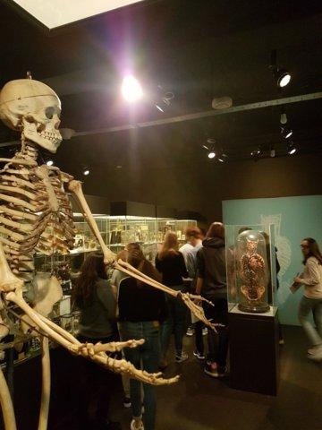 excursie-vrolik-museum-2019 4